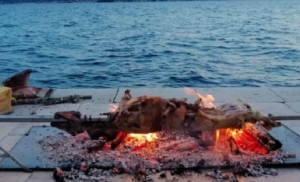 Pekli jagnje nasred rive: Dosad neviđen prizor na zadarskoj rivi