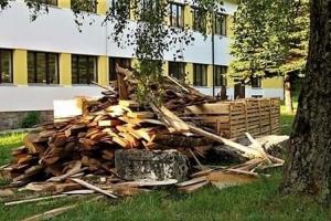 Drva istovarili na stećke iz trećeg vijeka