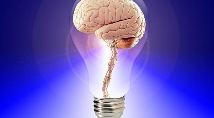 Koliko kalorija mozak potroši kada razmišljamo