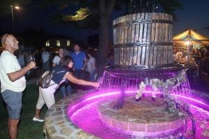 Vinska fontana: Slovenija, nakon pivske, dobija i drugu fontanu iz koje teče vino