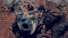 Živjeti sa najstarijim mumijama na svijetu