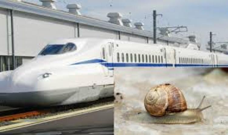 Puž zaustavio trideset vozova japanskih željeznica: Sofisticirana tehnologija doživjela poraz od male životinje