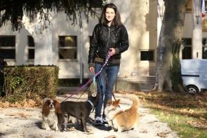 Idiotizam u Hrvatskoj: Tvrtku je morala registrirati kao zoološki vrt da bi mogla biti šetačica pasa
