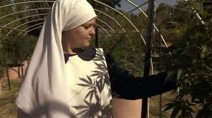 (video) Upoznajte časne sestre koje uzgajaju marihuanu i na tome zarađuju milione
