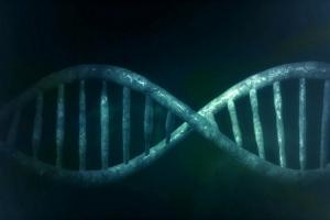 Naučnici otkrili misteriozni DNK koji sadrži gene drugih organizama