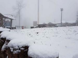 Snijeg od 18. januara