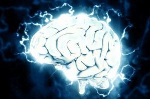 Čovjek koji je oživio mozak - Veliki uspjeh hrvatskog neuroznanstvenika: Mozak se može održati na životu satima nakon smrti