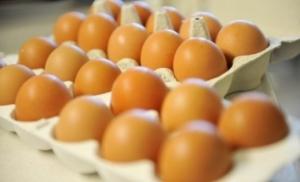 Odobren izvoz jaja za preradu u EU