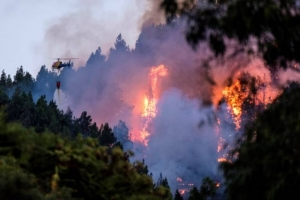 Požari se šire Evropom: Gore Kanarska ostrva