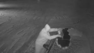 Pogledajte video paljenja automobila političara