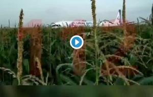 Ptica umalo srušila ruski avion sa 234 osobe