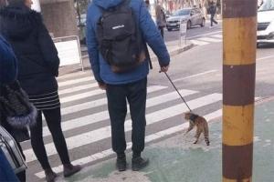 Foto izazvala buru na FB: Potpuno neobično za Split