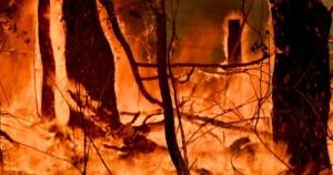 Požari van kontole u Australiji