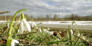 Zima završava bez zime: Prognoza do 3 marta