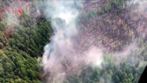 Zapalili Sibir da sakriju ilegalnu sječu šume?